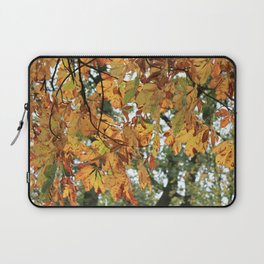 Horse Chestnut Conker Tree Fall Laptop Sleeve