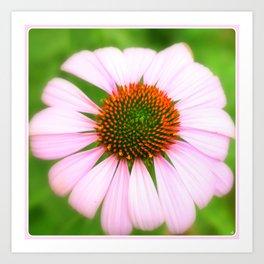 Pink Flower   Nadia Bonello Art Print