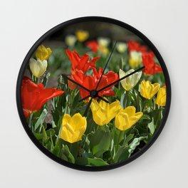 Lewes Tulips Festival Wall Clock