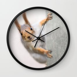 Squirrel - Who are you? Wall Clock
