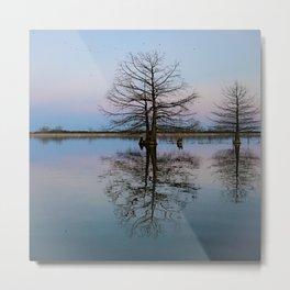 Tree Reflecting in Lake-I Metal Print