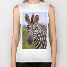 Zebra portrait, Africa wildlife Biker Tank