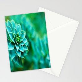 Green Succulent Mandala Stationery Cards