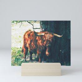 Ermintrude   Musical Crime Productions   Highland Photography   Highland Cow Mini Art Print