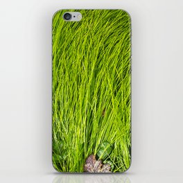 Verdure iPhone Skin