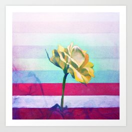 Flower Study #6 Chroma Art Print