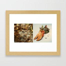 Covet Framed Art Print