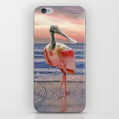 Beachcombing iPhone & iPod Skin