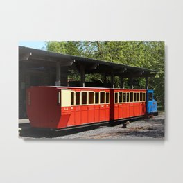 Narrow Gauge Metal Print