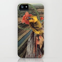 the more you fly iPhone Case