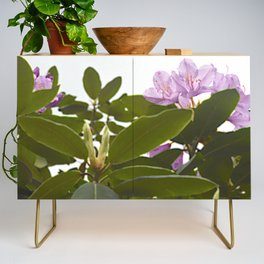 Pink Azalea Flowers with Spring Green Leaves Credenza