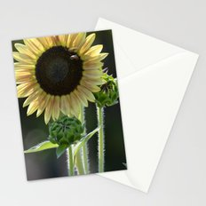 Tall Sunflower Stationery Cards