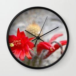 Cactus (Cleistocactus acanthurus) Wall Clock