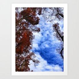 sky fall. Art Print