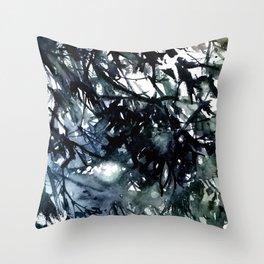 Running water down below in the dark, frozen forest Throw Pillow