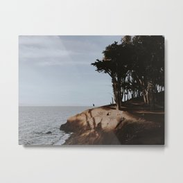 COYOTE POINT VI Metal Print