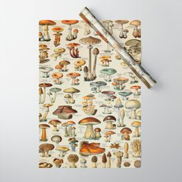 Mushrooms Vintage Scientific Illustration French Language Encyclopedia Lithographs Educational Wrapping Paper
