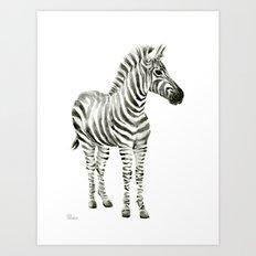 Zebra Watercolor Baby Animals Art Print