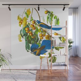 Florida Scrub Jay John James Audubon Vintage Birds Of America Illustration Wall Mural