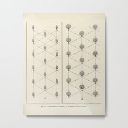 The fruit grower's guide  Vintage illustration of equilateral triangle Metal Print