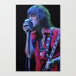 Trey Tosh of Shiverfox Canvas Print