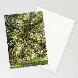 Wye Island Tree Tunnel | Maryland Stationery Cards