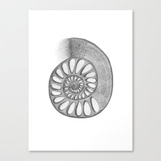 gyre Canvas Print