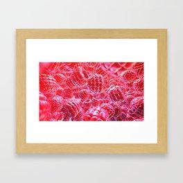 Fresh raspberry Framed Art Print