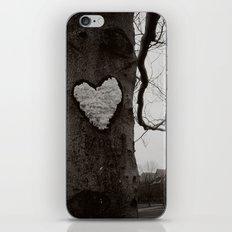 love on the quad iPhone & iPod Skin