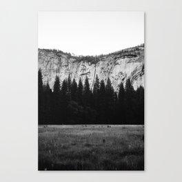 Yosemite Valley IV Canvas Print