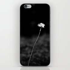 THE LAST FLOWER iPhone & iPod Skin