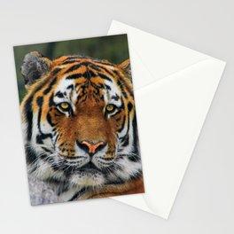 Amur tiger portrait Stationery Cards