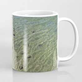 The Calm Along the River Coffee Mug