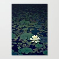 lotus flower Canvas Prints featuring Lotus by MSG Imaging