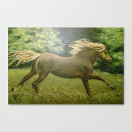 Lonely Gallop Canvas Print