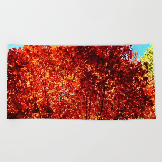 Red Maple Explosion Beach Towel