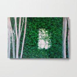 Natural framing Metal Print