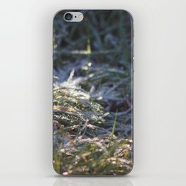 Frosty Underfoot iPhone Skin
