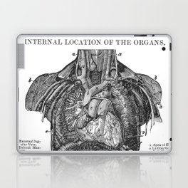 Location of Internal Organs in the Human Body Laptop & iPad Skin