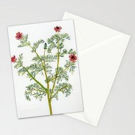 Spring Partridge eye Stationery Cards