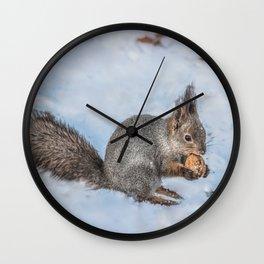 Hard nut to crack Wall Clock