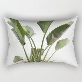 Fine Art Palm Leaves Against White Wall Rectangular Pillow