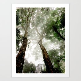 Jungle in the mist Art Print