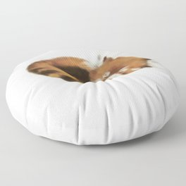 Baby Red Panda (Off-White) Floor Pillow