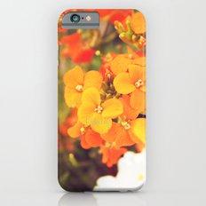 Orange Flowers iPhone 6s Slim Case