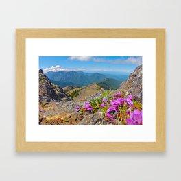 Mount Townsend Spring Framed Art Print