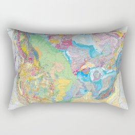 USGS Geological Map of North America Rectangular Pillow
