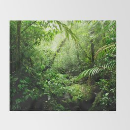 Warm Glow Rainforest Creek Throw Blanket