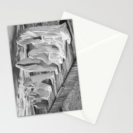 Ghosts of the Desert Stationery Cards