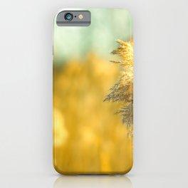 Golden Reet Stemps at Sunset  iPhone Case